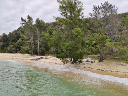 Apple Tree Bay Campsite