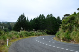 Wainui Road