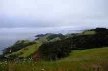 Blick auf Whau Bay