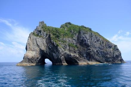 Motukokako Island