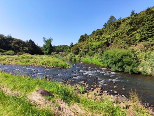 Kaihu and Waima Rivers