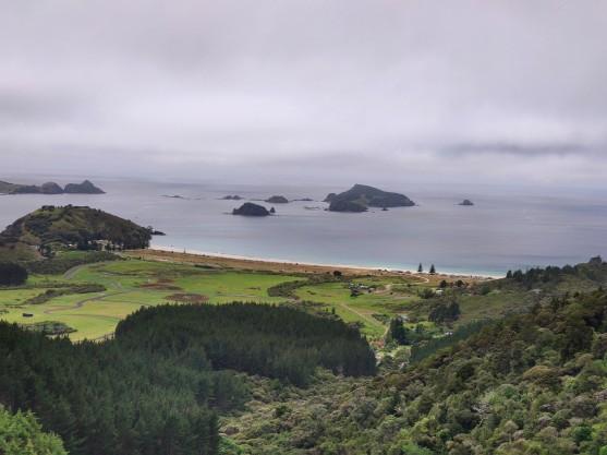 Blick auf Matauri Bay