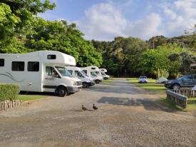Paihia Top 10 Caravan Park
