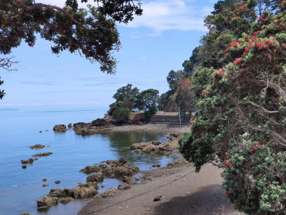 Coromandel Coast (Firth of Thames)