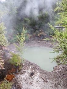 Rotorua Thermal Field