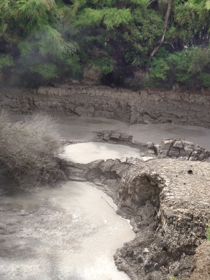 Rotorua Thermal Fields