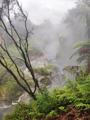 Waikite Valley Thermal Pools