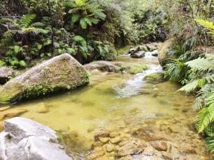 Torrent River