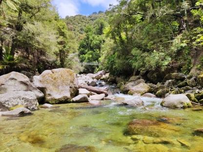 Wainui Falls Track