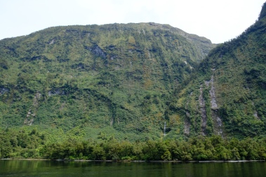 Hall Arm (Doubtful Sound)