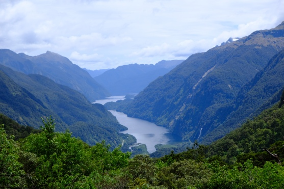 Doubtful Sound Viewpoint