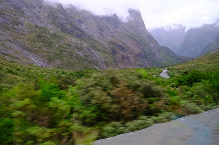 Zurück vom Milford Sound