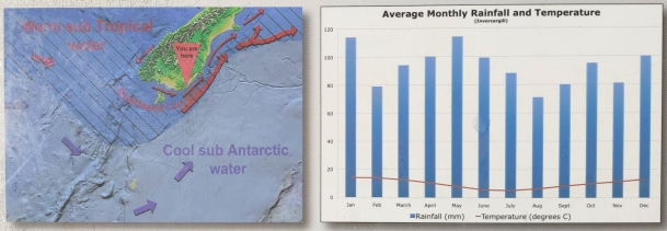 Invercargill Monthly Rainfall and Temperature