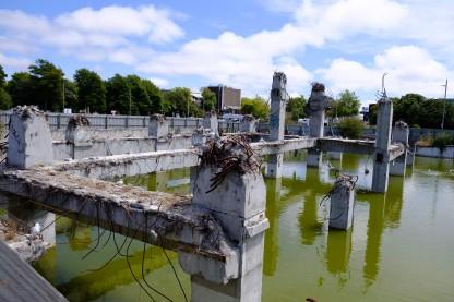 Möwen auf Ruine