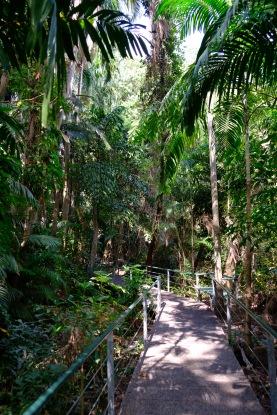 Promenade zu Aquascene in Darwin