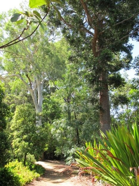 Botanischer Garten (Adelaide)