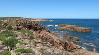 Anna Bay