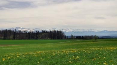 Aussicht zu Glarner Alpen